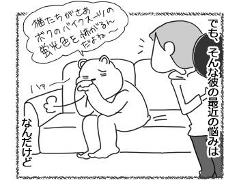 11042017_cat2.jpg