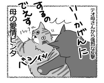 13032017_cat5.jpg