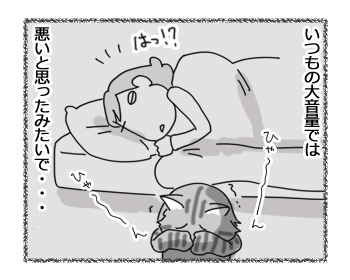15032017_cat4.jpg
