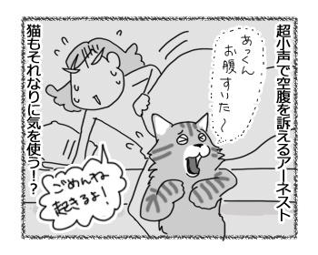 15032017_cat5.jpg