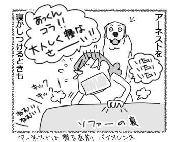 17042017_cat3.jpg