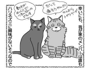 19042017_cat2.jpg