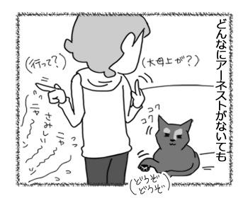 20032017_cat3.jpg