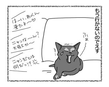 20032017_cat4.jpg