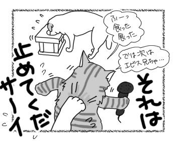 21022017_cat4.jpg