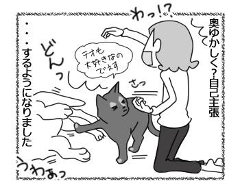 21032017_cat5.jpg