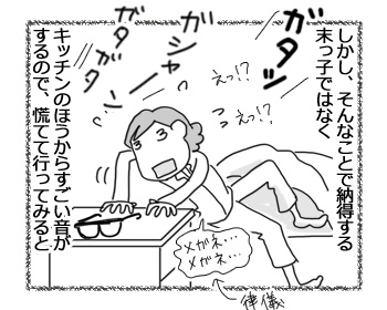 22032017_cat3.jpg