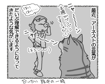 24022017_cat1.jpg