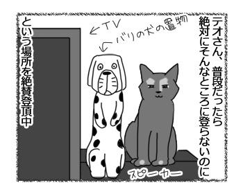 24032017_cat1.jpg