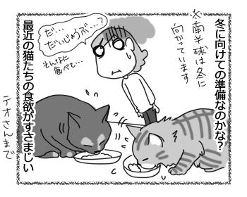 30032017_cat1.jpg