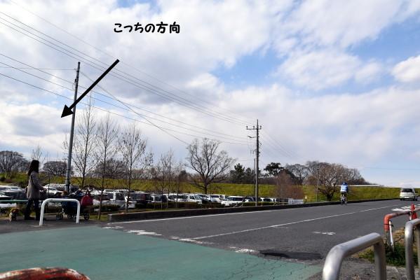 20170303205.jpg
