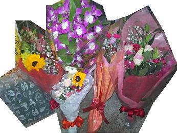 花束や鉢植えをいただきました
