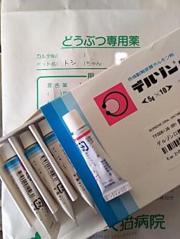 デキサメタゾン 口腔 用 軟膏
