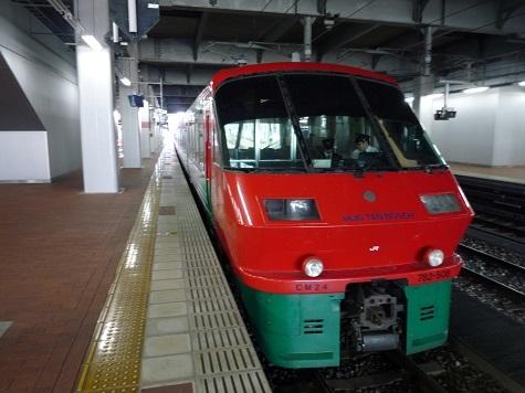 P1080138.jpg