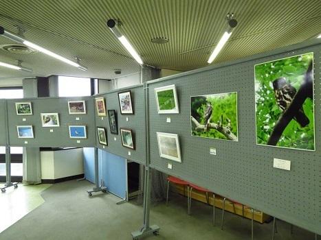 170218写真展設営完了:羽村コニュニティセンター (1) - コピー
