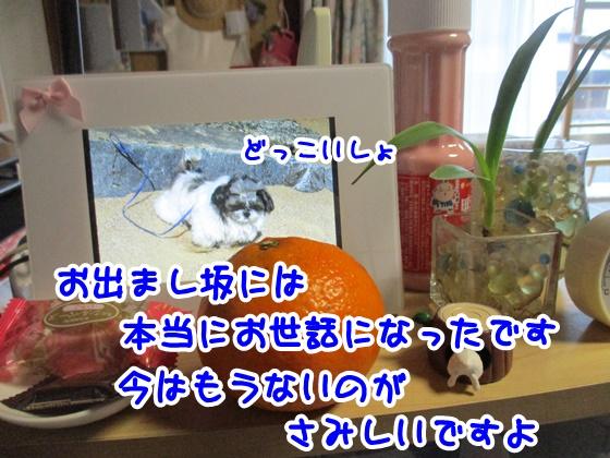 0214-09_20170214200135de9.jpg