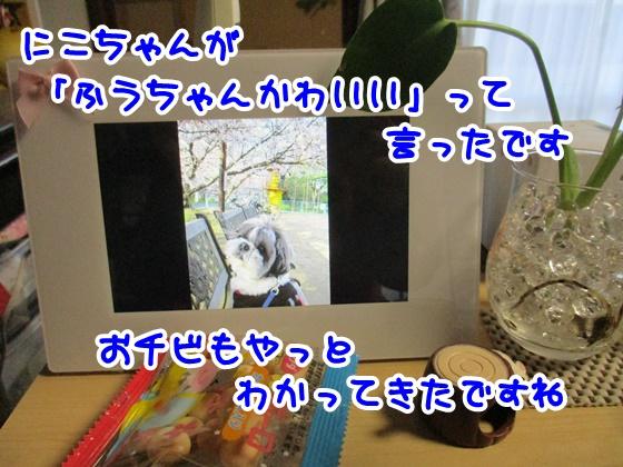 0224-02_20170224185046ba0.jpg