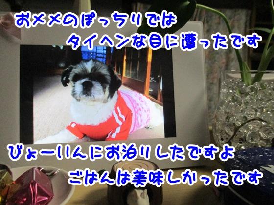 0228-11_20170228193820c42.jpg