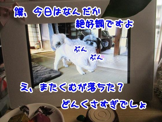 0301-10_20170301192129a2f.jpg