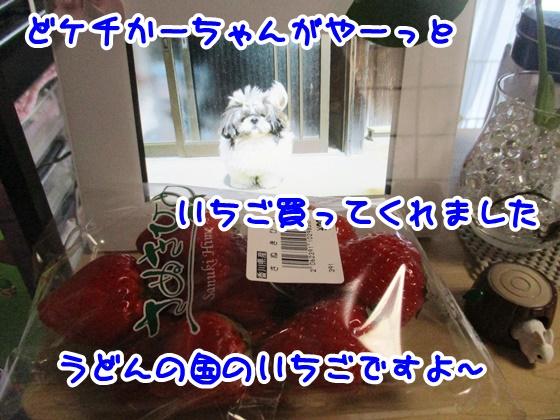 0303-08_2017030319393901b.jpg