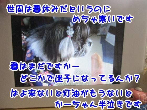 0325-09_20170325163511878.jpg