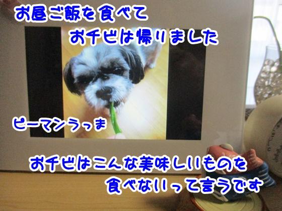 0402-08_201704021853513ef.jpg