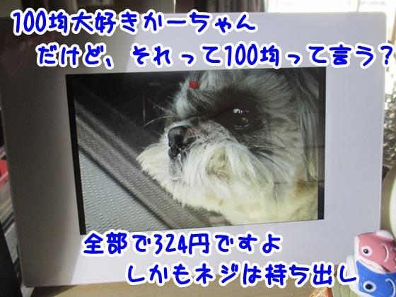 0403-08.jpg
