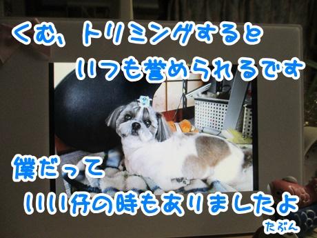 0409-10_20170409192727b01.jpg