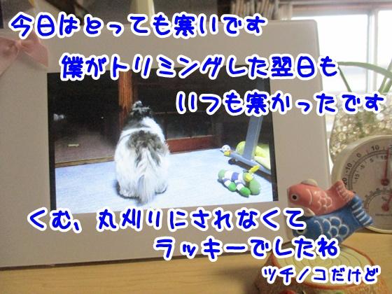0410-10_20170410151319ab2.jpg