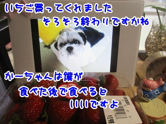 0411-01_20170411164849f3c.jpg