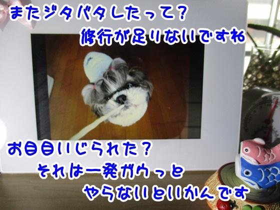 0421-08_20170421163851801.jpg