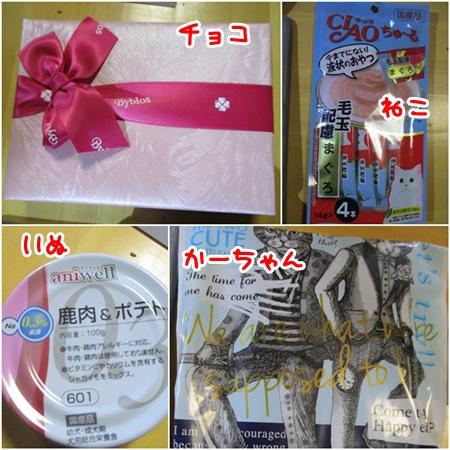 0218-花トラさん