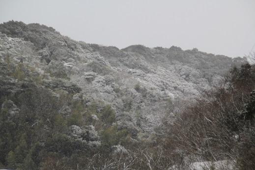 雪の日 2017-2-11-2