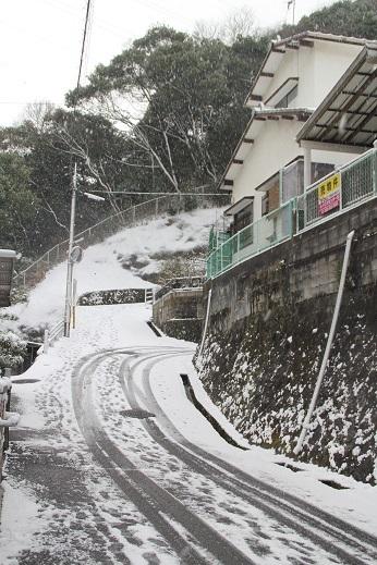 雪の日 2017-2-11-5