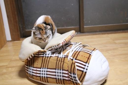猫ベッド その3