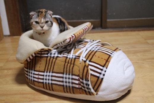 猫ベッド その4