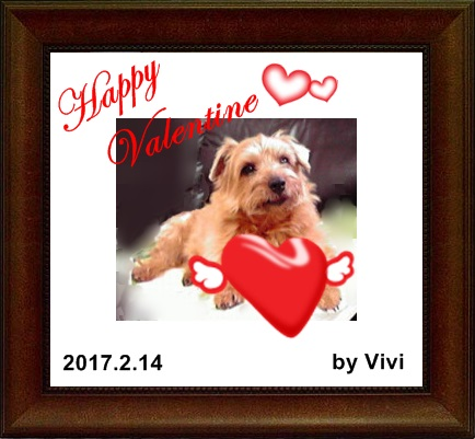 Valentine vivi