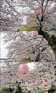 kanasaki1.jpg