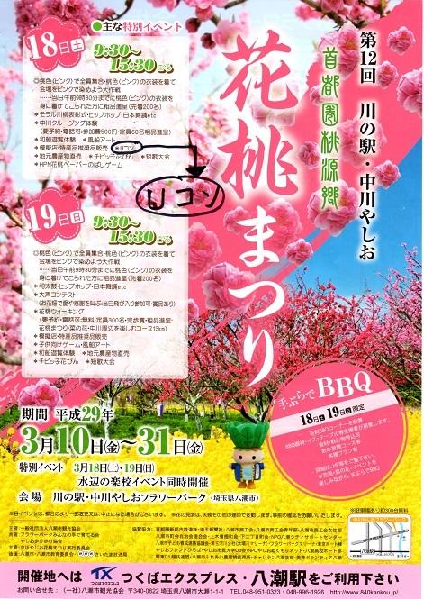 img020花桃祭り