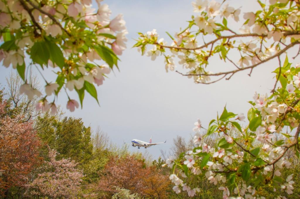 富山空港H29_4_16