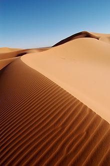 220px-Morocco_Africa_Flickr_Rosino_December_2005_84514010.jpg