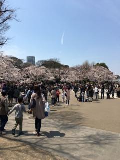 2017上野動物園_004_1