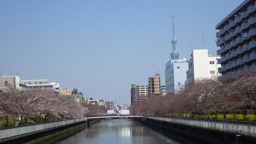 福寿橋スカイツリー