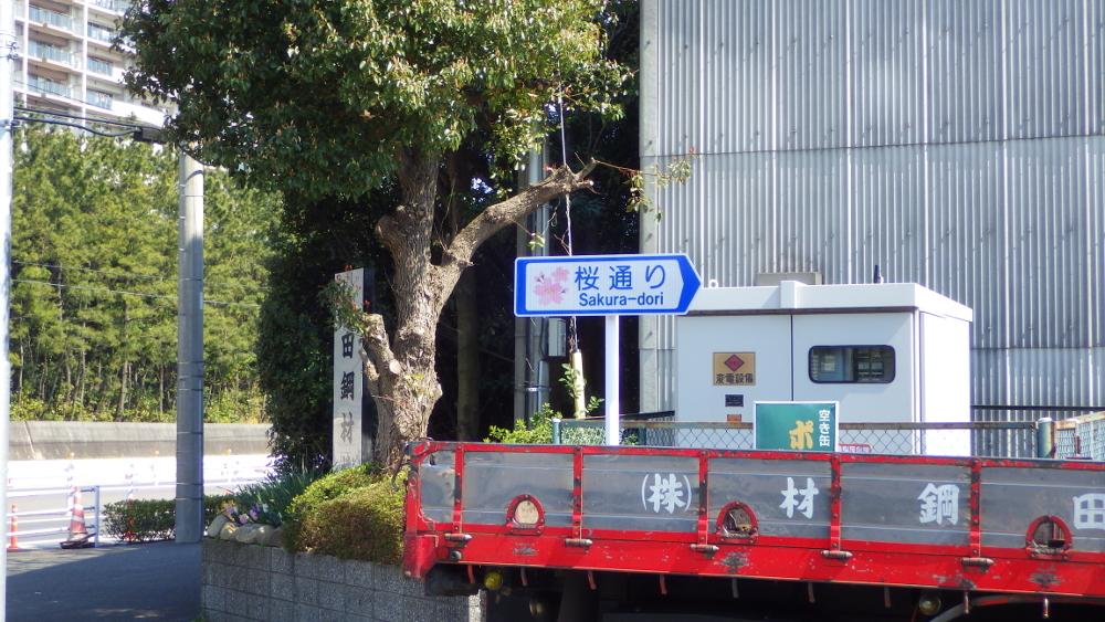 浦安鉄鋼団地 桜通り
