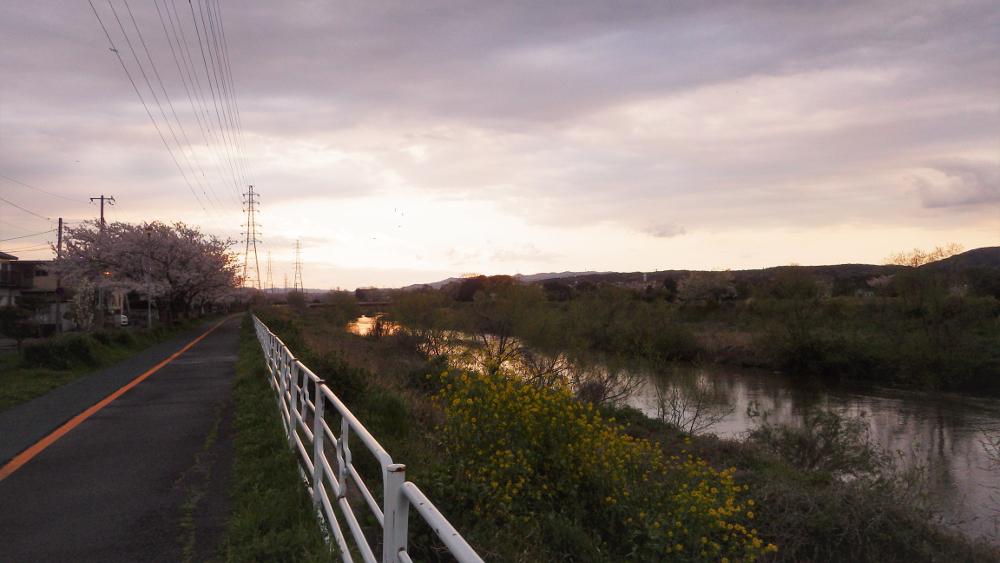 暮れなずむ小糸川