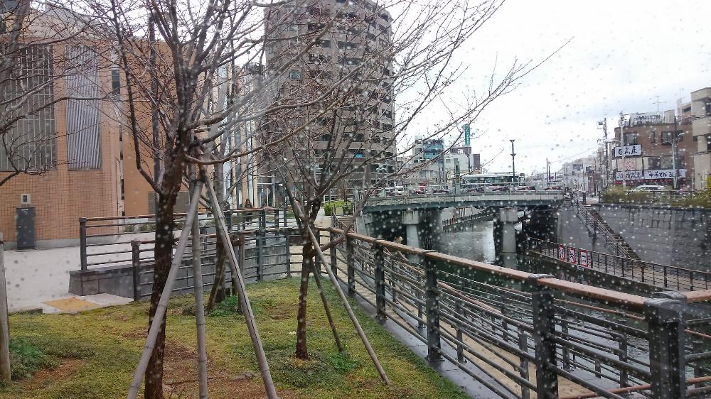 スカイツリー 雨