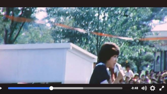 恋する夏の日テープ031