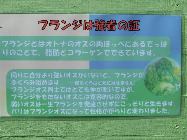 浜松 108