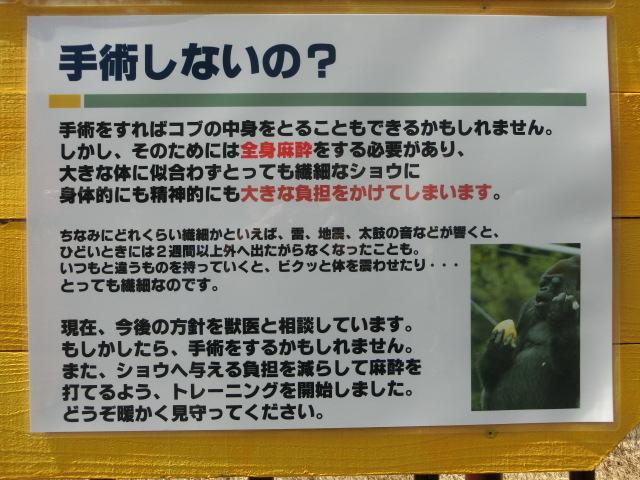 浜松 123