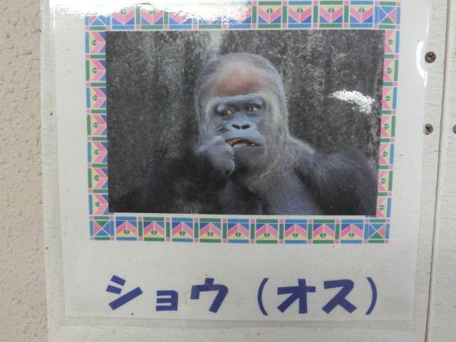 浜松 125